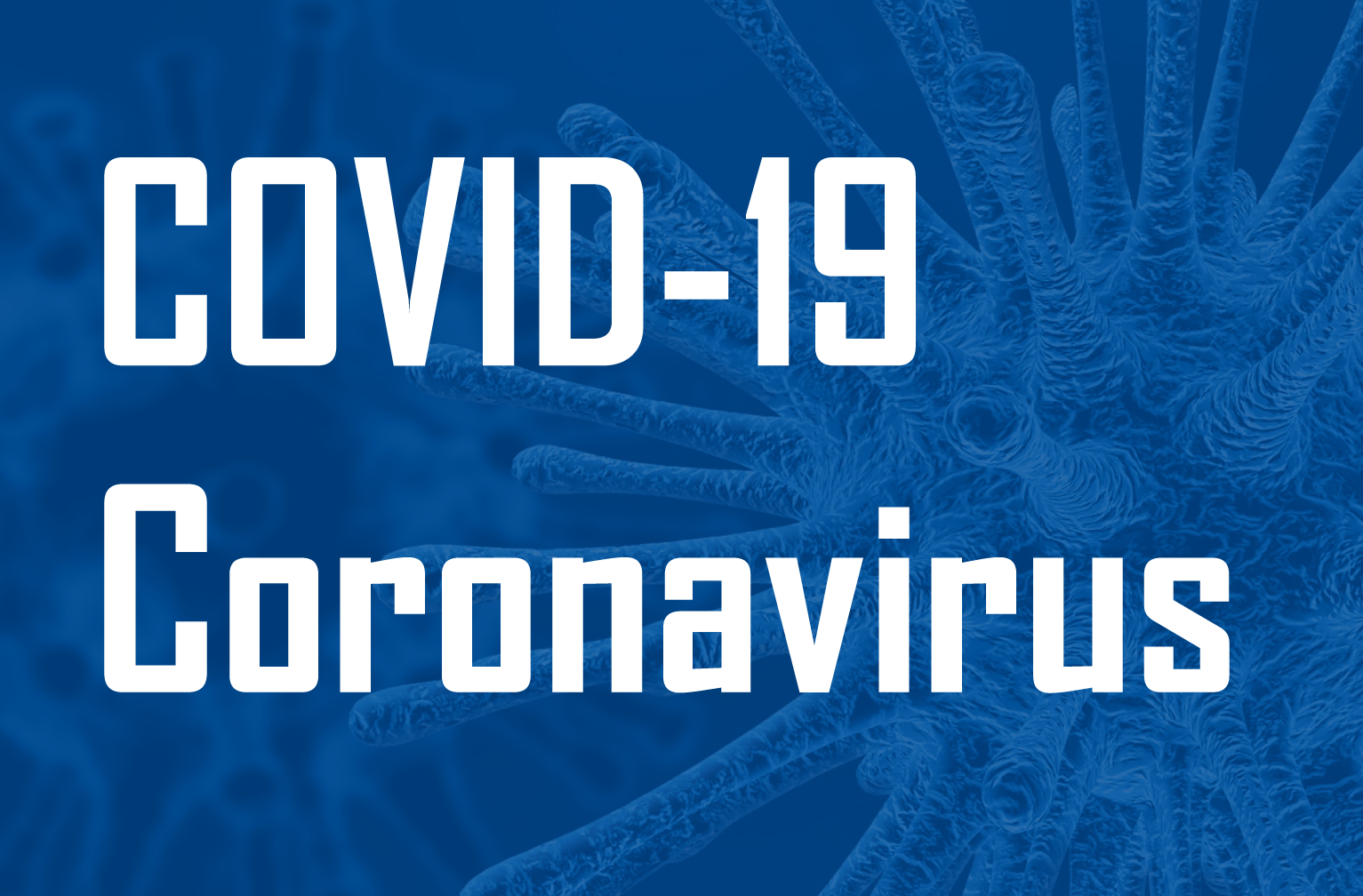334 Coronavirus pic for website